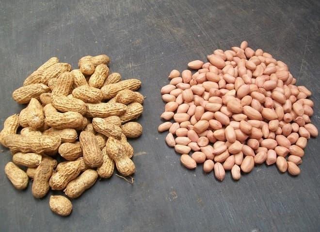 Cara Memilih Kacang Tanah Yang Bermutu Baik